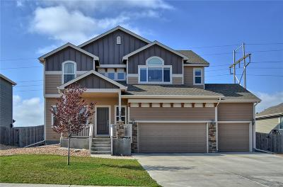 Mead Single Family Home Under Contract: 2604 Branding Iron Way