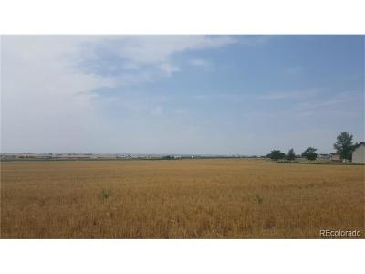 Residential Lots & Land Active: 6029 55 Road