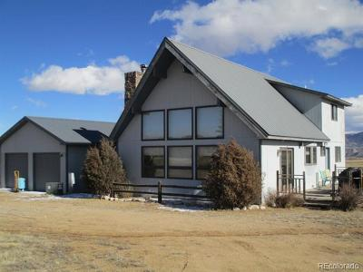 Nathrop Single Family Home Active: 13955 County Road 273