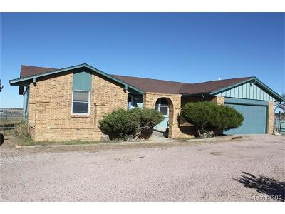 Elbert County Single Family Home Active: 35165 Morgan Trail
