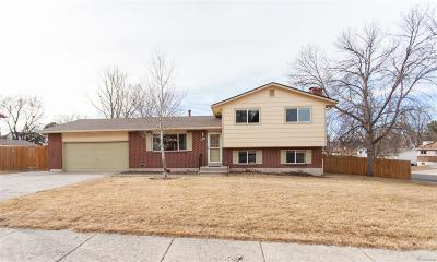 Colorado Springs Single Family Home Active: 3370 Inspiration Drive