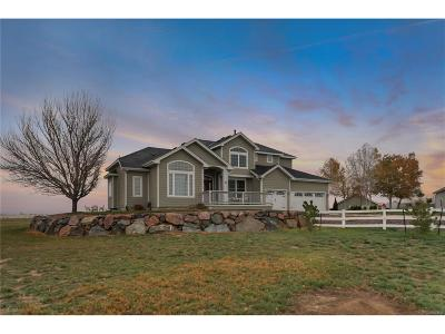 Longmont Single Family Home Active: 4785 County Road 24 3/4