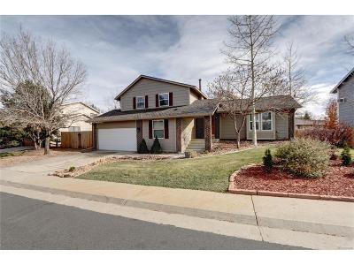 Englewood Single Family Home Under Contract: 5914 South Jamaica Way