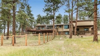 Evergreen Single Family Home Active: 29499 Buchanan Drive