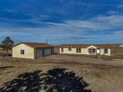 Elbert County Single Family Home Active: 11237 Pine Meadows Drive