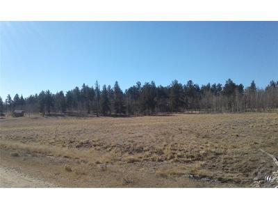 Hartsel Residential Lots & Land Active: 1124 Superstition Trail