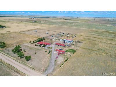 Arapahoe County Residential Lots & Land Active: 67531 East County Road 34