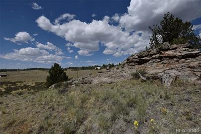 Park County Residential Lots & Land Active: 635 Ouray Trail