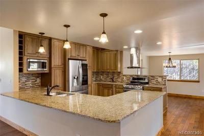 Steamboat Springs Single Family Home Active: 16 Woods Drive
