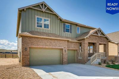 Parker CO Single Family Home Active: $749,900