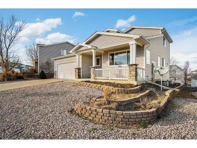 Littleton Single Family Home Active: 9637 Fox Den Drive