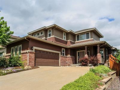 Meadows, The Meadows Single Family Home Under Contract: 4263 Willowrun Lane