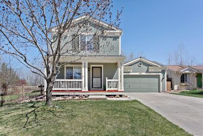Erie Single Family Home Under Contract: 313 Tynan Drive