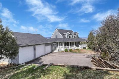 Castle Rock Single Family Home Active: 841 North Faver Drive