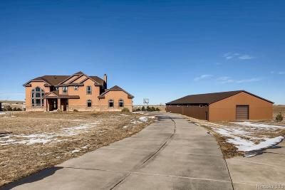 Elbert County Single Family Home Active: 3581 Zane Gray Loop