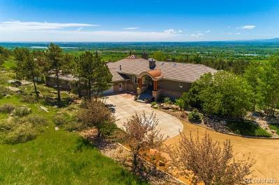Longmont Single Family Home Active: 6635 Rabbit Mountain Road