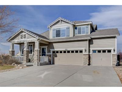 Castle Rock Single Family Home Active: 6801 Shannock Avenue