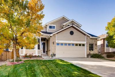 Parker Single Family Home Active: 16704 Trail Sky Circle