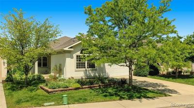 Longmont Single Family Home Active: 951 Champion Circle
