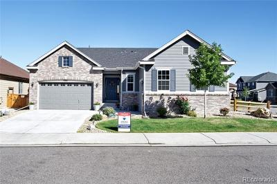 Castle Rock Single Family Home Active: 7201 Bandit Drive