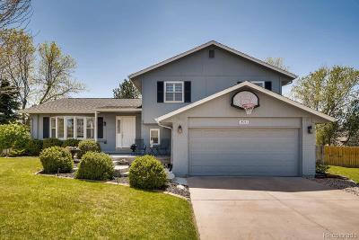 Centennial Single Family Home Under Contract: 8041 South Cook Way