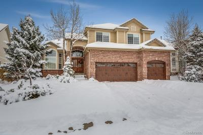 Superior Single Family Home Active: 538 Zircon Way
