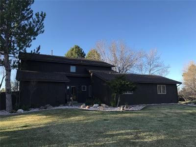 Parker Single Family Home Active: 8050 Lakeview Drive