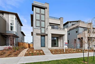 Denver Single Family Home Active: 9367 East 59th North Place