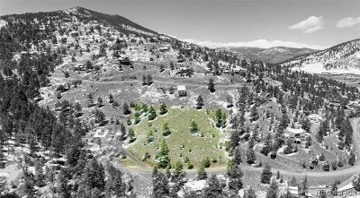 Evergreen Residential Lots & Land Active: Meadow View Drive