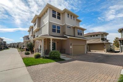 Castle Rock Single Family Home Active: 4478 Elegant Street