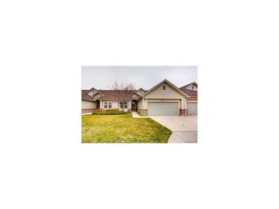 Arapahoe County Condo/Townhouse Under Contract: 2868 West Riverwalk Circle #C
