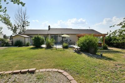Parker Single Family Home Under Contract: 10344 Black Forest Drive