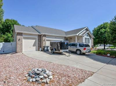 Berthoud Single Family Home Active: 100 Bein Street
