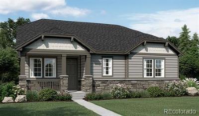 Centennial Single Family Home Under Contract: 6319 Village Lane