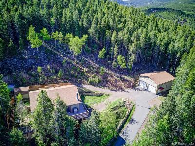 Conifer Single Family Home Under Contract: 8782 Martin Lane