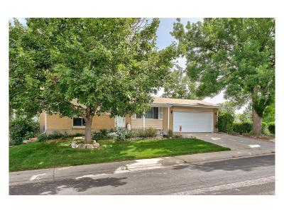 Centennial Single Family Home Under Contract: 6522 South Albion Way