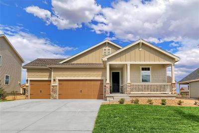 Elbert County Single Family Home Active: 5800 Desert Inn Loop