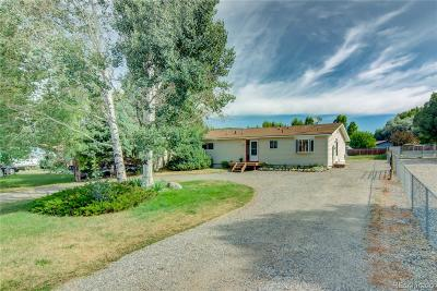 Steamboat Springs Single Family Home Active: 40567 Steamboat Drive
