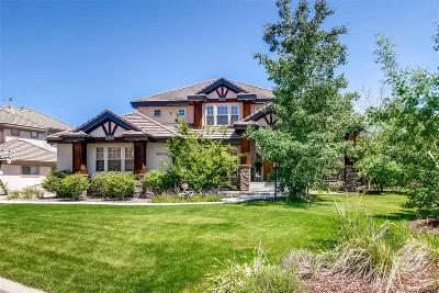 Lone Tree Single Family Home Under Contract: 9564 South Shadow Hill Circle