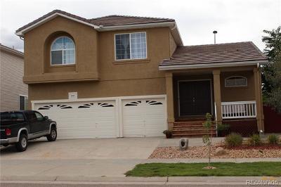 Denver Single Family Home Active: 4805 Jericho Street