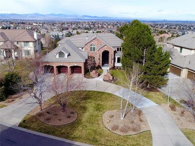 Lone Tree Single Family Home Under Contract: 10191 Prestwick Trail