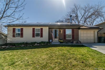 Single Family Home Under Contract: 4365 South Braun Way