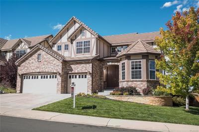 Cobblestone Ranch Single Family Home Under Contract: 6679 Esmeralda Drive