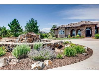 Parker CO Single Family Home Active: $1,850,000