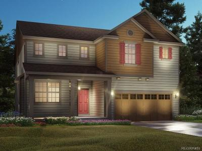 Longmont Single Family Home Active: 183 Western Sky Circle
