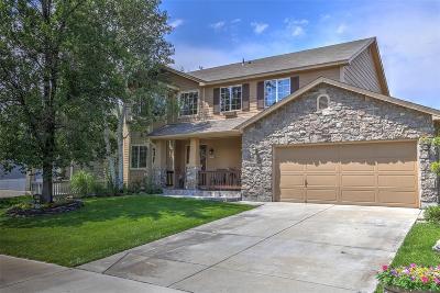 Henderson Single Family Home Under Contract: 11435 River Run Circle