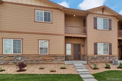 Longmont Single Family Home Under Contract: 1424 Sepia Avenue
