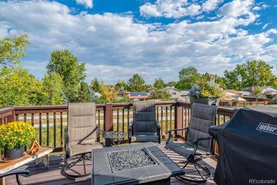 Denver CO Single Family Home Active: $395,000