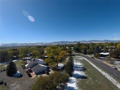 Arvada Single Family Home Under Contract: 7491 Kline Drive