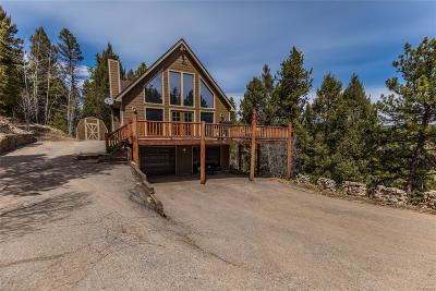 Conifer Single Family Home Under Contract: 24998 Red Cloud Drive